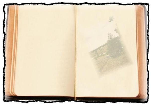 open-book-cover-clip-art-book_open-4